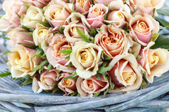 Bouquet of pastel roses in turquoise wicker basket Stock Photos