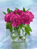 Bouquet with peonies. In a vase Royalty Free Stock Image