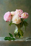 Bouquet of peonies. In a glass jar Stock Image