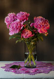 Bouquet of peonies Royalty Free Stock Photography