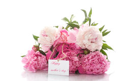 Bouquet of peonies blooming Royalty Free Stock Photo