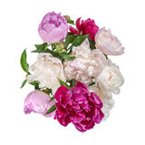 Bouquet of peonies flower Royalty Free Stock Images