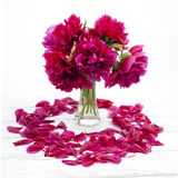 Bouquet of peonies and lilac petals Stock Images