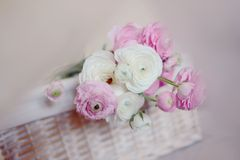 Bouquet of peonies Stock Photography