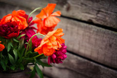 Bouquet of peonies and poppies Royalty Free Stock Photos
