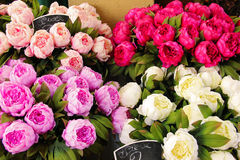 Bouquet of peonies for sale Royalty Free Stock Photos