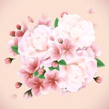 Bouquet of peonies summer background Stock Photos