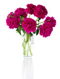 Bouquet of peonies in vase Stock Photography