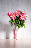 Bouquet of peonies in a vase against a blue wall. Stock Photography
