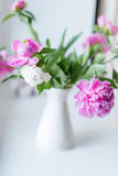 Bouquet of peonies in a vase Stock Image