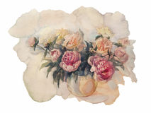 Bouquet of peonies watercolor isolated. Bouquet of white and rose peonies watercolor illiustration Stock Photography