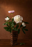 A  bouquet of peonies Royalty Free Stock Photo