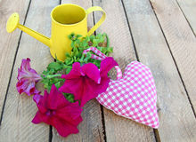Bouquet of petunia and heart Royalty Free Stock Images