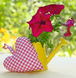 Bouquet of petunia in a watering-can Royalty Free Stock Photo