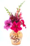 A bouquet of petunias and snapdragons Royalty Free Stock Photo
