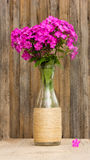 Bouquet of phlox flowers in a glass bottle on the background of old barn boards Royalty Free Stock Images