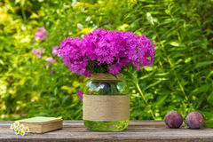 Bouquet of phlox flowers in a glass vase, ripe plums and old book with daisies on the table on nature background Stock Photo