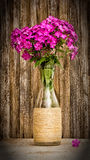 Bouquet of phlox in a glass vase on a background of old barn boards. Toned photo with vignette. selective focus Royalty Free Stock Photography
