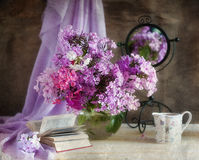 Bouquet of phloxes Royalty Free Stock Image
