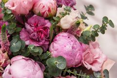 Bouquet of pink bud peonies and carnation closeup Stock Images