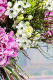 Bouquet of pink carnation, arabian star and green chrysanthemums. Bouquet of pink carnation, arabian star flower (ornithogalum arabicum) and green chrysanthemums Stock Photos