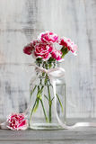 Bouquet of pink carnations in glass vase Stock Photography