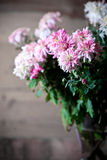 Bouquet of pink chrysanthemum Royalty Free Stock Photos
