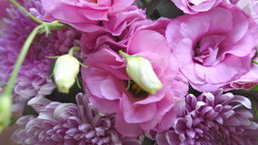 Bouquet of pink chrysanthemums and eustoma stock footage