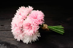 Bouquet pink cornflowers stock photography