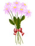 Bouquet of pink daisies Royalty Free Stock Photo