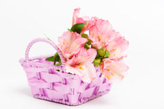 Bouquet of pink flowers alstroemeria in basket Royalty Free Stock Image