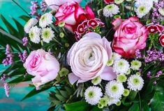 Bouquet of pink flowers. Bouquet of fresh pink spring flowers royalty free stock photo