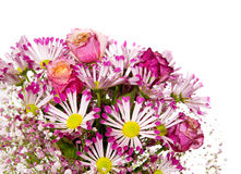 Bouquet of pink flowers  isolated on white. Stock Image