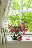 Bouquet of pink flowers on a window Royalty Free Stock Photography