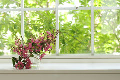 Bouquet of pink flowers on a window Royalty Free Stock Images