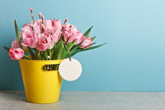 Bouquet of pink fresh tulips with pussy-willow in yellow bucket. On table on blue backround Stock Photos