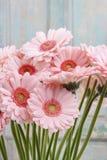 Bouquet of pink gerbera daisies Stock Photos