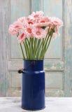 Bouquet of pink gerbera daisies Stock Photo
