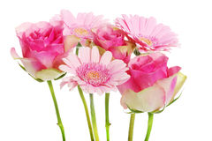A bouquet of pink gerbera flowers and roses. Royalty Free Stock Image
