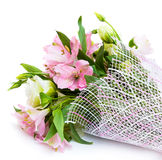 Bouquet of pink and green flowers. On white background Royalty Free Stock Photos