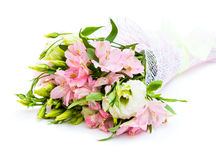 Bouquet of pink and green flowers. On white background Stock Images