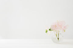 Bouquet of pink hydrangeas flowers in vase on white table. Empty space for text Royalty Free Stock Photos