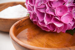 Hydrangeas, water and salt Royalty Free Stock Images