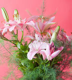 Bouquet of pink lilies Stock Photo