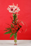 Bouquet of pink lily flower on red Stock Photos