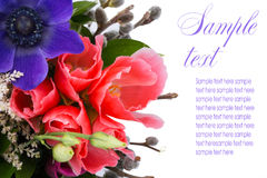 Bouquet of pink lisianthus in bud and bloom. Stock Images