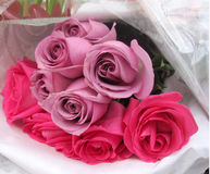 Bouquet of pink and mauve roses Stock Photography