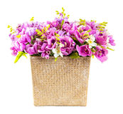 Bouquet of pink orchid in wicker basket Royalty Free Stock Images