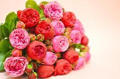 Bouquet of pink peones and roses royalty free stock photography