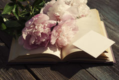 Bouquet of pink peonies on an open book an empty white card for the text Stock Images